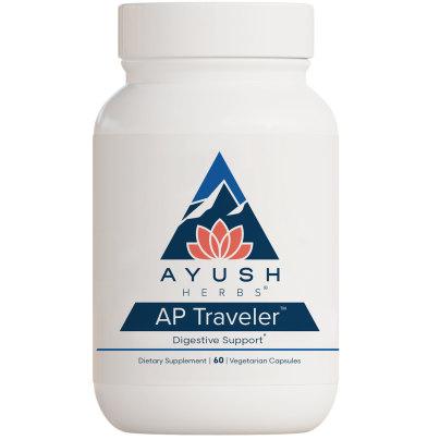 AP Traveler product image