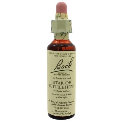 Star of Bethlehem product image