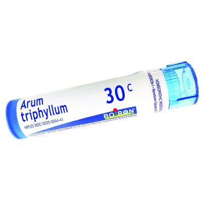 Arum Triphyllum product image