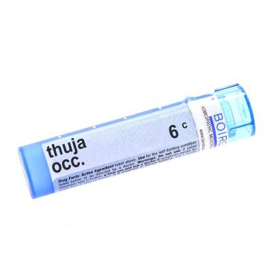 Thuja Occidentalis 6c product image