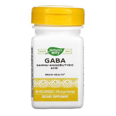 GABA - Enzymatic Therapy