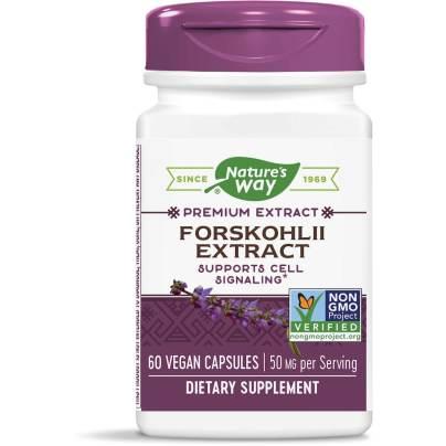 Forskohlii Extract product image