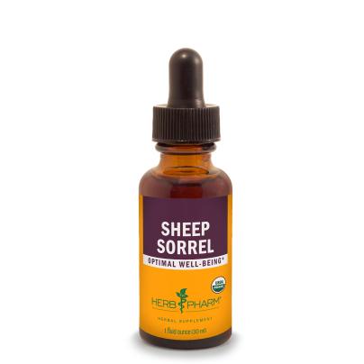 Sheep Sorrel product image