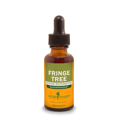 Fringe Tree product image