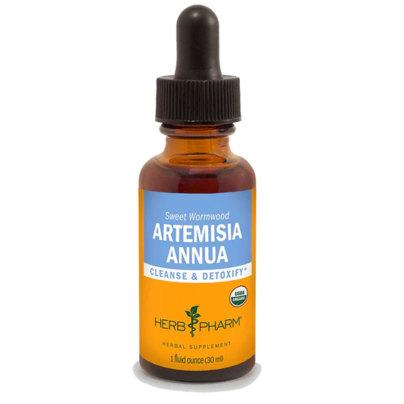 Artemisia Annua product image