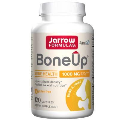 Bone-Up product image