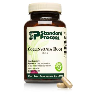 Collinsonia Root product image
