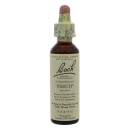 Beech product image