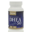 DHEA 50mg product image