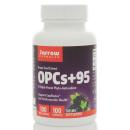 OPCs + 95 100mg product image