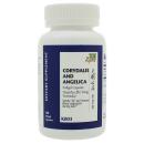 Corydalis and Angelica product image