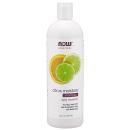 Citrus Moisture Shampoo product image