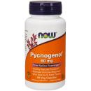 Pycnogenol 60mg product image