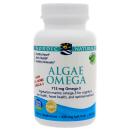 Algae Omega product image