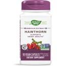 Hawthorn Standardized product image