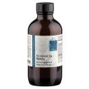 Echinacea Royal product image